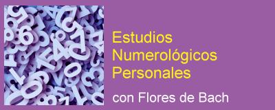 consulta Numerología con flores de Bach