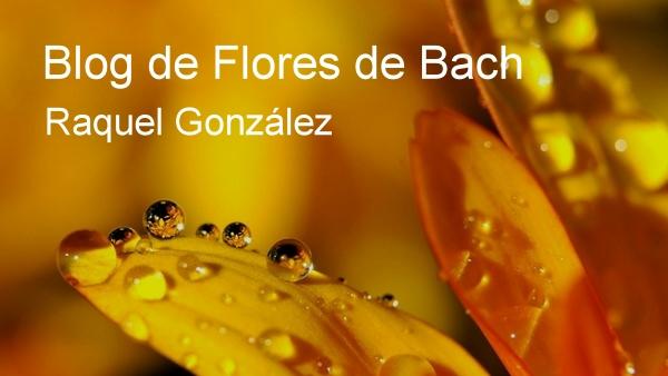 Blog de Flores de Bach