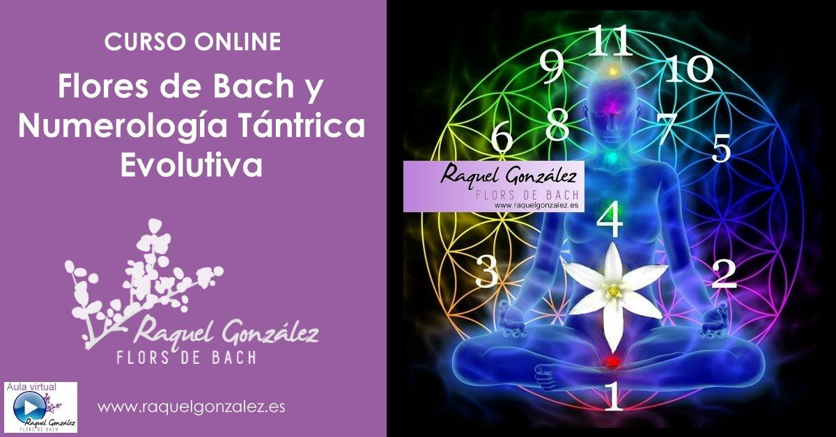Curso Flores de Bach y Numerología