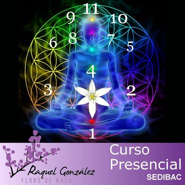Curso de numerología tántrica floral para terapeutas florales