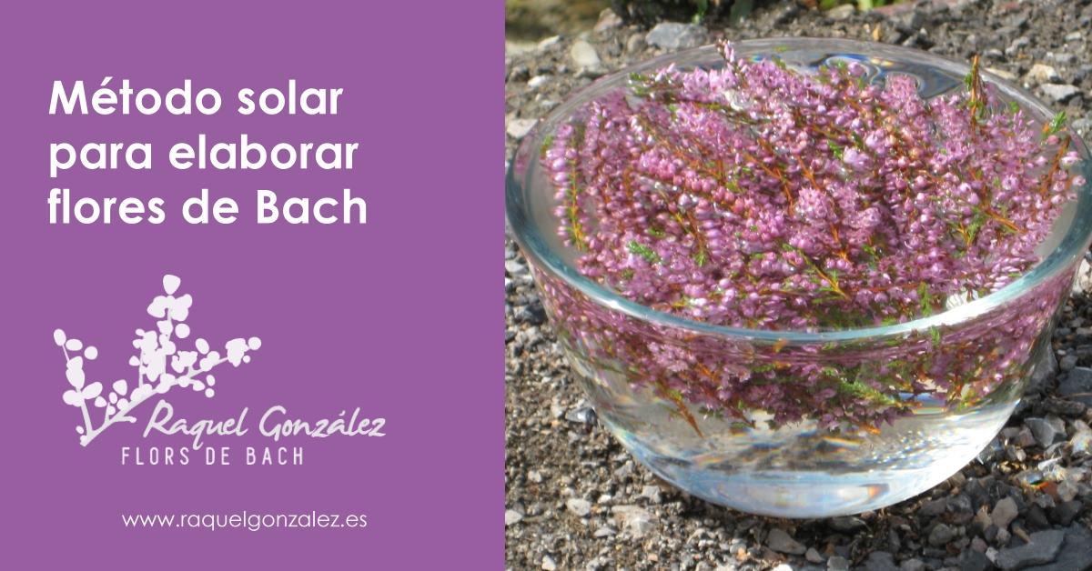 metodo solar para elaborar flores de Bach
