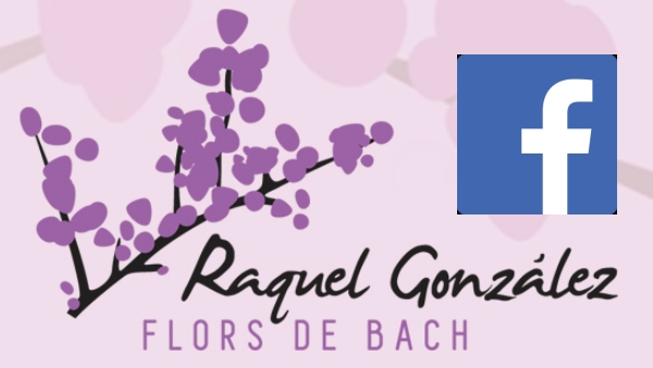 Facebook Raquel Gonzalez Flores de Bach