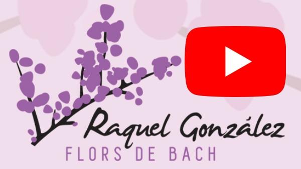 Youtube Raquel Gonzalez Flores de Bach